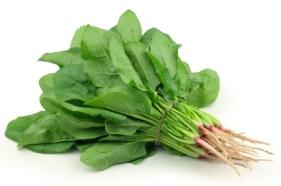 spinach-bunch